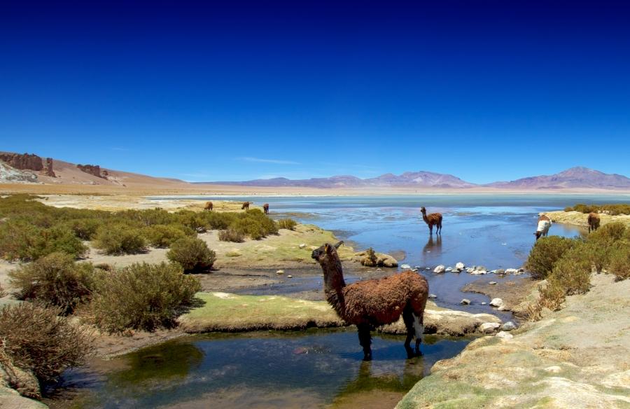 Chile, syksyn 2010 maailmanympärimatkalla