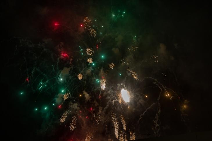 Viareggio carnevale 2019-126.jpg