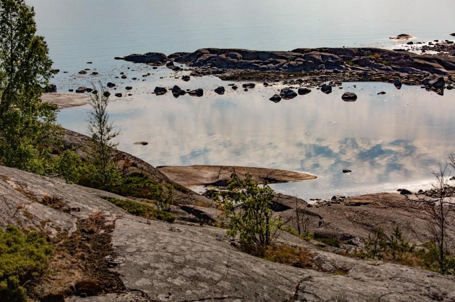 Puoli vuotta Suomessa – sattuneestasyystä